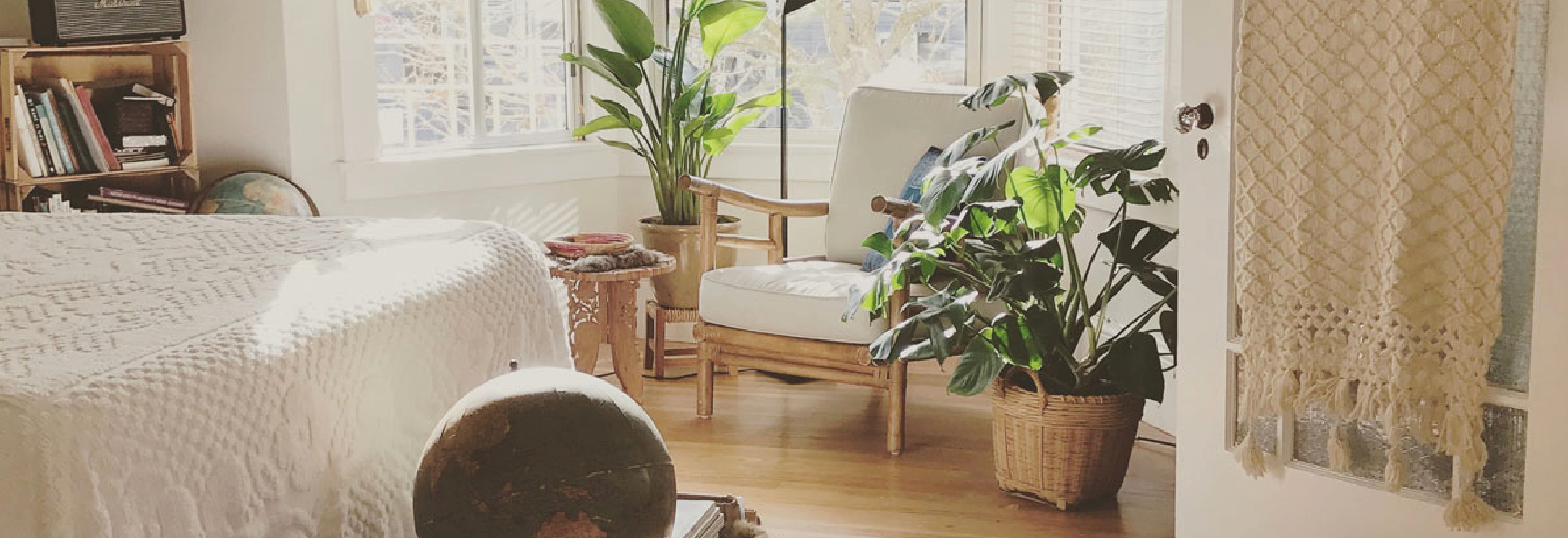 Plants in your bedroom - good or bad?