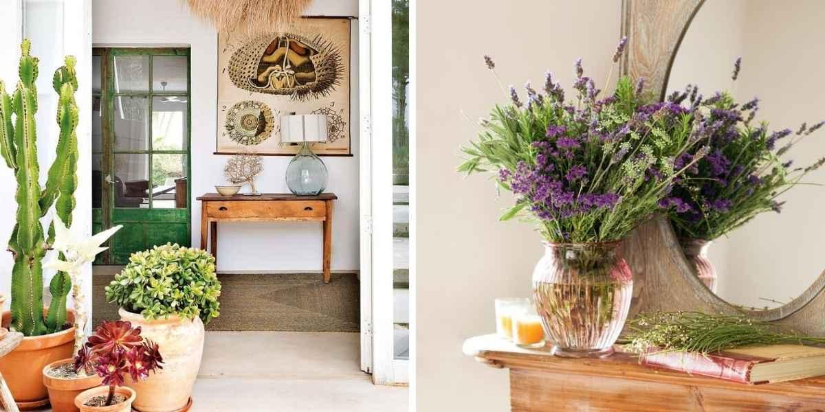 decorar casa de pueblo con plantas